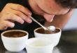 Kahve Tadımı